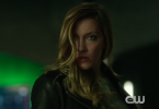 Arrow Laurel Lance